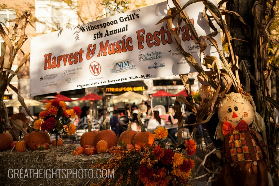 Great Heights Photo: The Blog | Harvest Festival